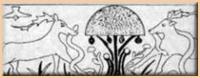 Dessin des mosaïques d'Henchir Messaouda (Tusinie - Ve siècle)